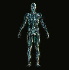 骨格を整体して股関節痛解消