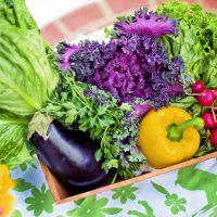 3色の栄養バランス