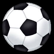 頭蓋骨はサッカーボール